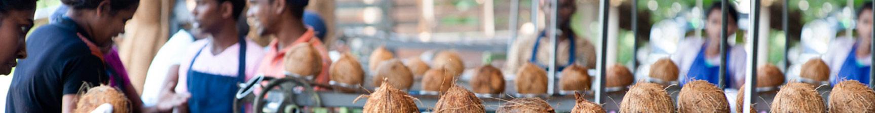 fair trade coconut oil